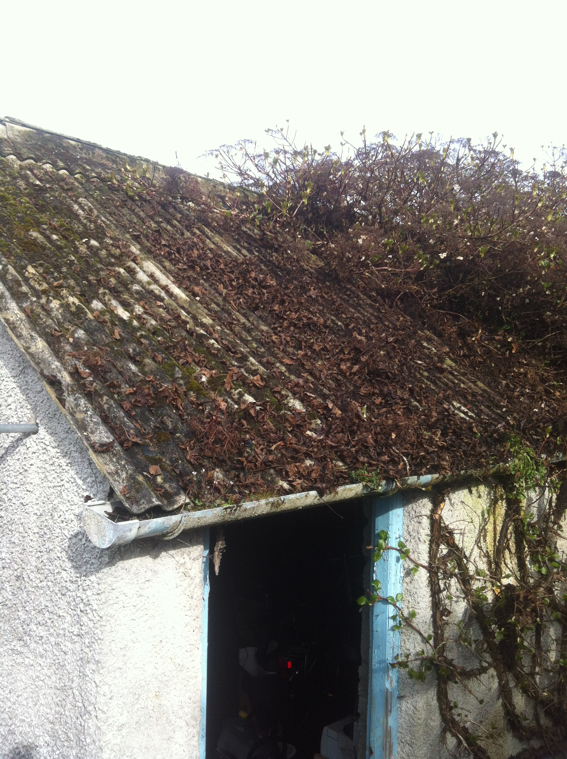 Garage Roof Asbestos Removal Cement Chrysotile Ulverston